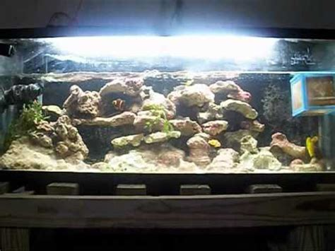 on the rocks how to build a saltwater aquarium reefscape how to care for live rock stack live rock salt water
