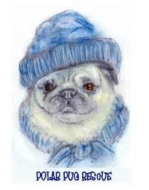 alaska pug rescue shop for pug rescue pugs dogbreed gifts