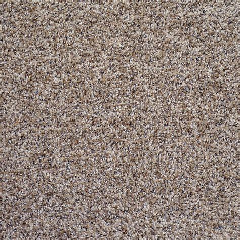 carpet colors trafficmaster hartsfield color skypoint twist 12 ft