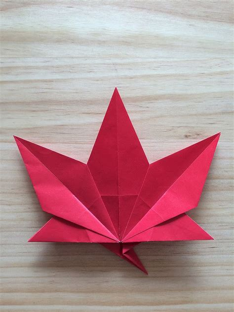 Origami Maple Leaf - 17 best images about origami leaves on how to