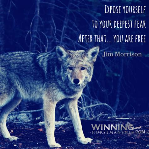 Expose Yourself 2 by Quotes Tips Inspiration Wisdom