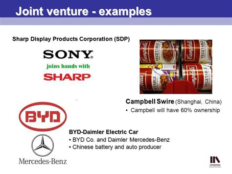 exle of joint venture fundamentals of international business ppt