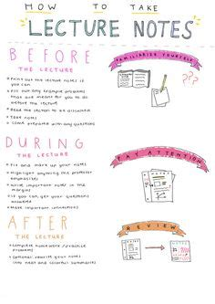 vet school survival guide notes from a back row student books study to study and printables on