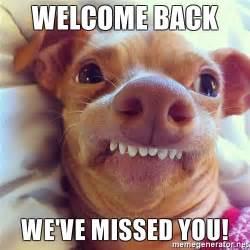 Welcome Back Meme - welcome back we ve missed you phteven dog meme generator