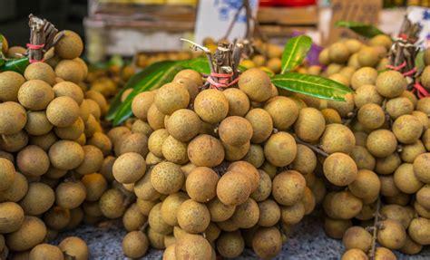 fruit in longan fruit benefits vitamin class
