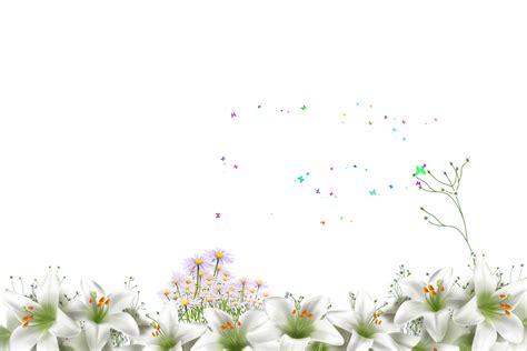 wallpaper bunga menjalar gambar bunga untuk kad joy studio design gallery best