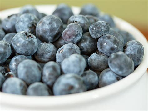 blueberry grow guide perfect plants