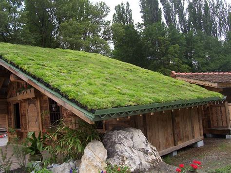 green roof what you didn t know about green roofs conscious living tv