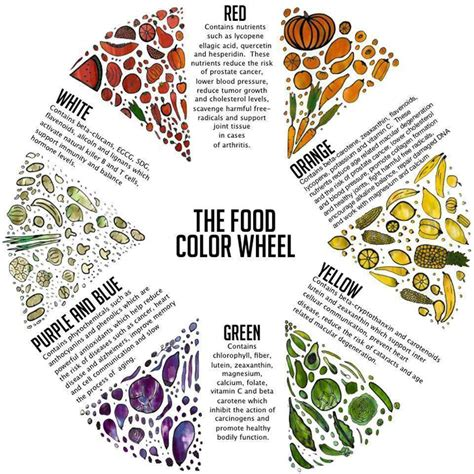 food coloring colors the food color chart infographic colour chart veggies
