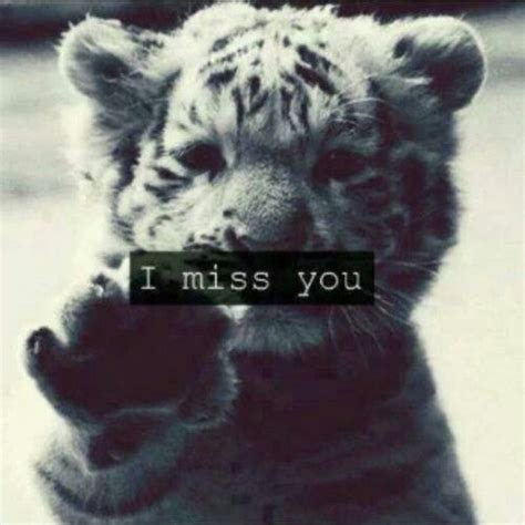 i miss you too images aww