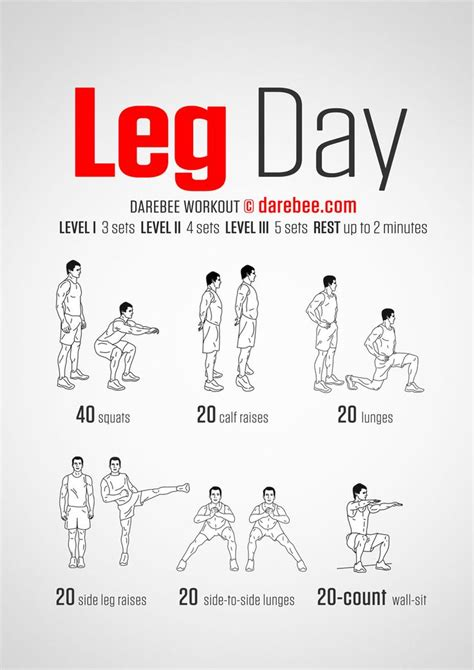 leg workout for all groups day 1 health tips