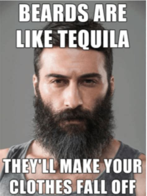 Beard Meme Guy - the top 29 beard memes of 2015 live bearded