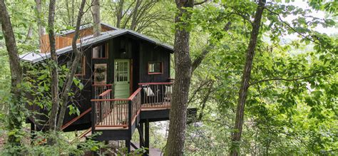 treehouse community dove helps bring second luxury treehouse to town times