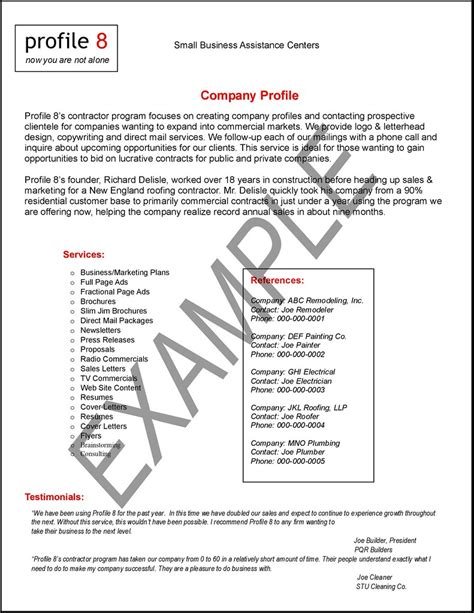 example of a profile essay profile resume examples resume writing