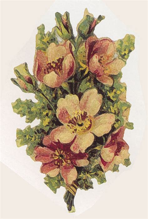 decoupage prints artbyjean paper crafts vintage decoupage prints in florals