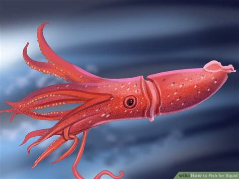 what color are squids how to fish for squid 15 steps with pictures wikihow