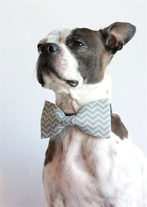 puppy bows grey chevron geometric bow tie wedding accessories for dogs collar
