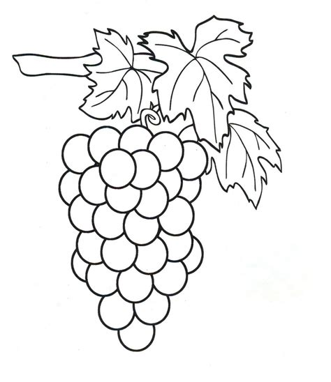 free coloring page of grapes grapes coloring pages to download and print for free