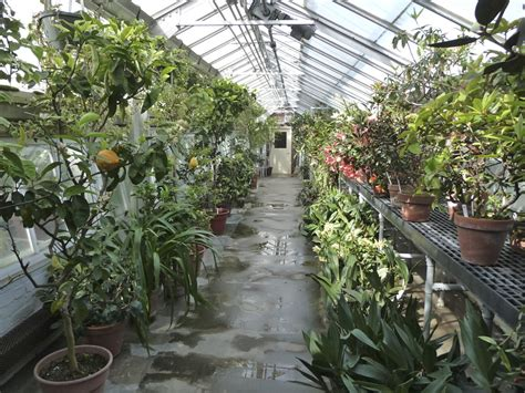 Smith Botanical Gardens Botanic Garden Of Smith College Green Gloria