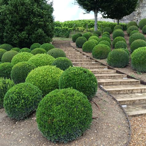 French accents in the garden ? giving your garden a little