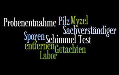 schimmel wohnung test schimmel tests gefahren fr 252 hzeitig erkennen und beseitigen
