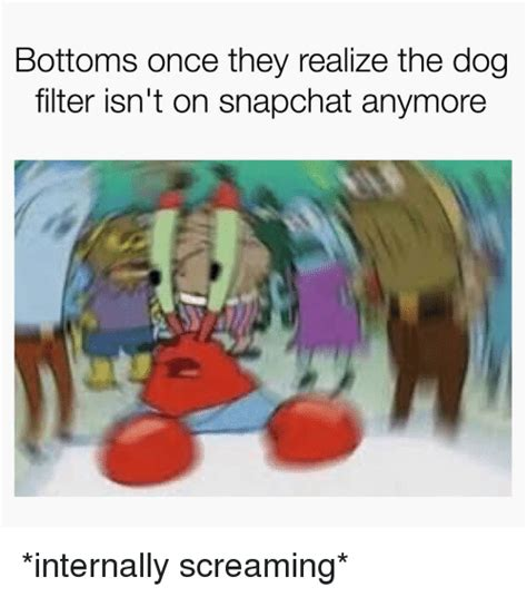 bottoms   realize  dog filter isnt  snapchat