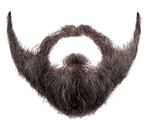 10 curiosidades sobre a barba brasil arom 225 ticos
