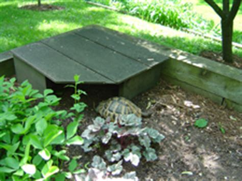 the turtle house margaret george