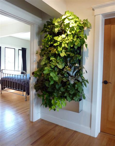 indoor garden wall living walls for small spaces gardens guest post