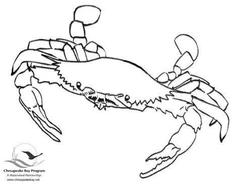 easy crab coloring page bay coloring book chesapeake bay program jeff