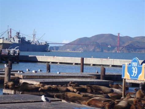 fisherman s wharf fisherman s wharf san francisco zdj錂cie 銉曘偅銉冦偡銉c兗銉炪兂銈恒儻銉笺儠