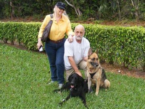 are german shepherds family dogs german shepherd leila family portrait lifeline rescue
