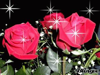 imagenes de rosas con movimiento y brillo image gallery imagenes con rosas rojas