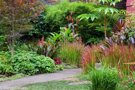 Perennial Garden Perennial Garden With Japanese Maple Creative Landscapes