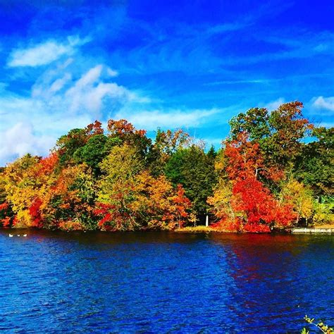 blue 19 jersey pretty p 963 2015 fall foliage throughout south jersey news