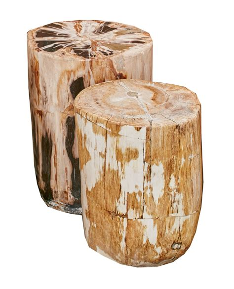 Petrified Wood Stool by Blond Petrified Wood Stool Petrified Stool