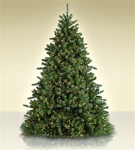 fairmont spruce artificial christmas trees treetime