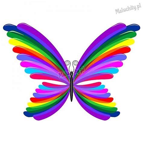 naklejka dla dzieci kolorowy motylek mot010 maluchity