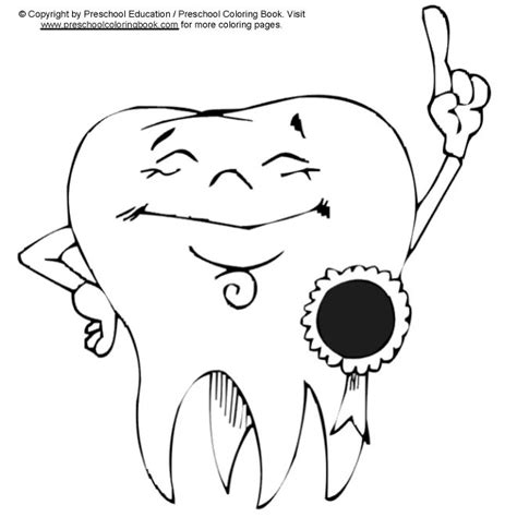 dental anatomy coloring book dental anatomy coloring book coloring pages