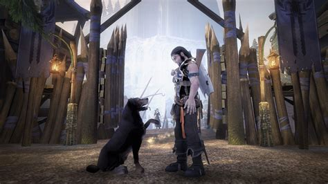 setter dog fable 3 gaming since 198x 187 blog archive 187 fable ii