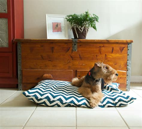 stylish dog beds stylish dog beds for your lovely dogs homesfeed