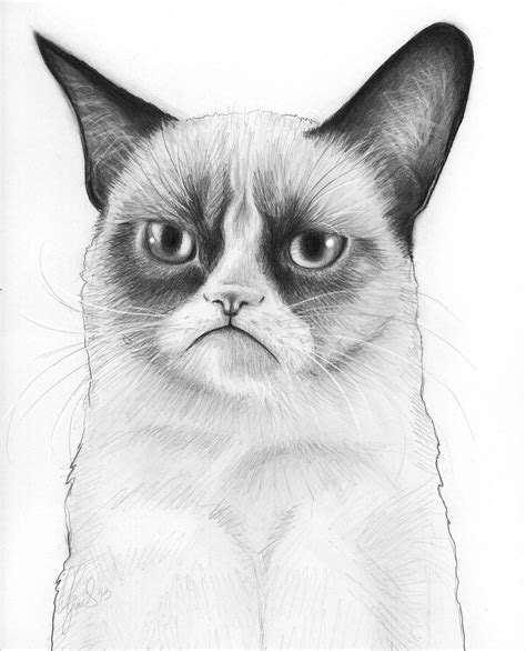 cat drawings art ideas sketches design trends