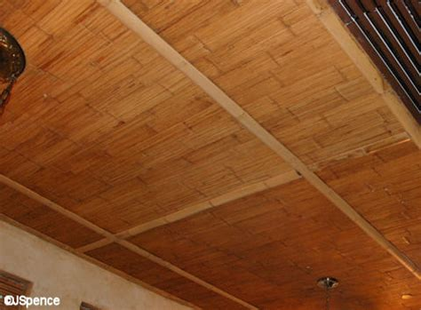 Straw Ceiling Panels by It S Part Four Disney S Animal Kingdom