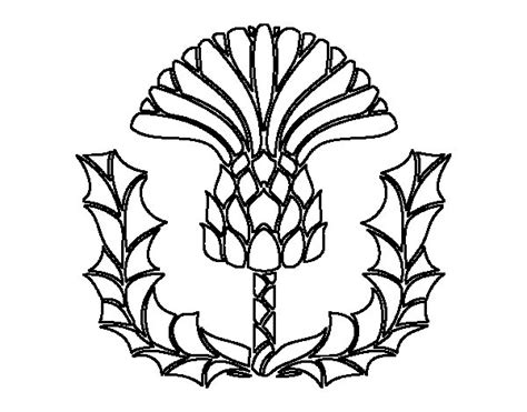 free scotland thistle coloring pages