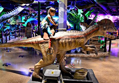 Land Of The Dinosaurs panaea land of the dinosaurs ride a dino brie brie blooms
