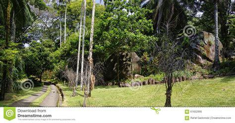 Seychelles National Botanical Gardens Seychelles National Botanical Gardens Stock Image Image