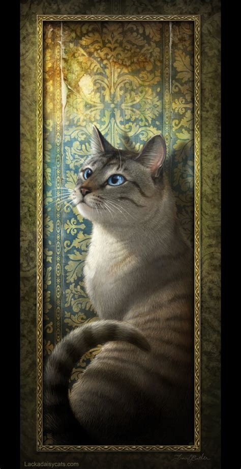 cat ka wallpaper lackadaisy cats images rocky hd wallpaper and background