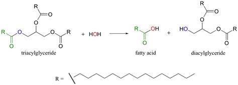 12 1 introduction to carboxylic acid derivatives and the