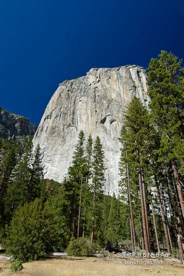 Comfort Inn Merced Yosemite Pictures The Most Beautiful National Park