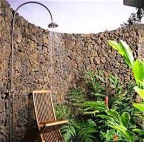 having sex in the backyard future backyard on pinterest tropical gardens plants and side yards